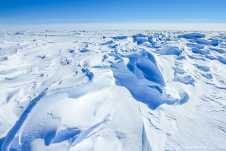 Expo Across Antarctica 31