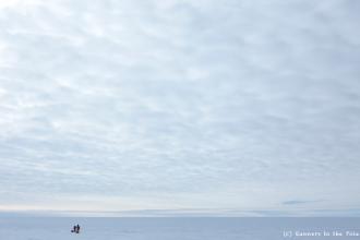 L'immensité de l'Antarctique n'a d'égale que l'immensité du ciel - surtout lorsque le voile nuageux se pose comme un reflet sans fin des glaces de l'Antarctique.