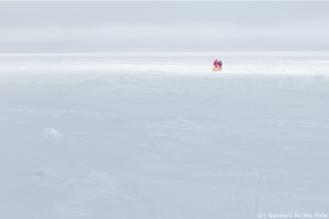 Plus que 500 kilomètres à parcourir pour réussir la traversée de l'Antarctique à pied. Et très peu de jours pour atteindre cet objectif. Le brouillard ralentit notre progression. Le temps de sommeil est réduit au maximum - 5 heures par jour en moyenne - alors que les journées de marche s'allongent jusqu'à 12, 13, 14 heures.